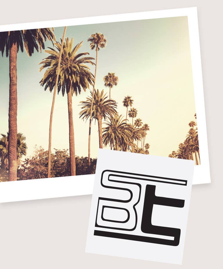 Palm Trees in LA and B&T Logo